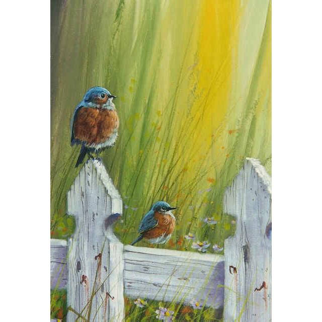 0403 Eastern Bluebirds