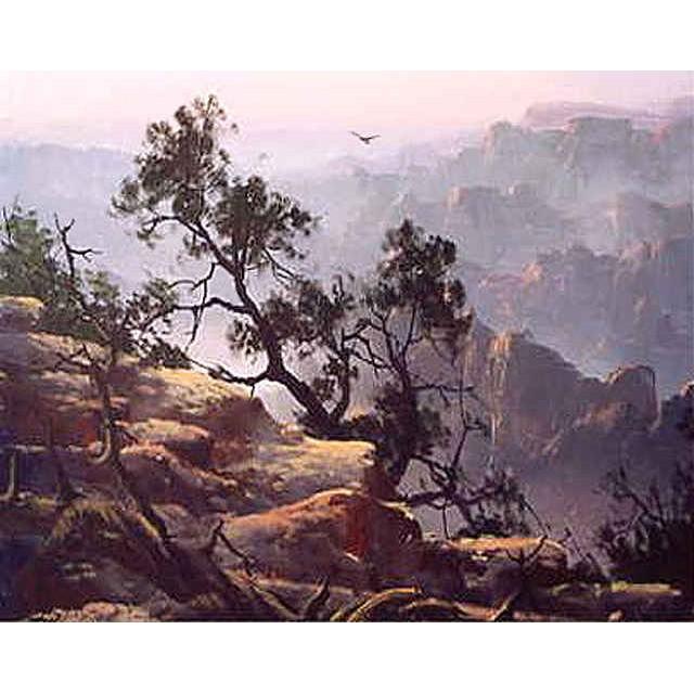 0405 Canyon Cedars