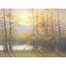 0904 Aspen Serenade