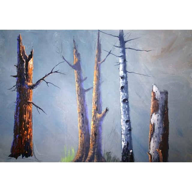 1902 Tree Study