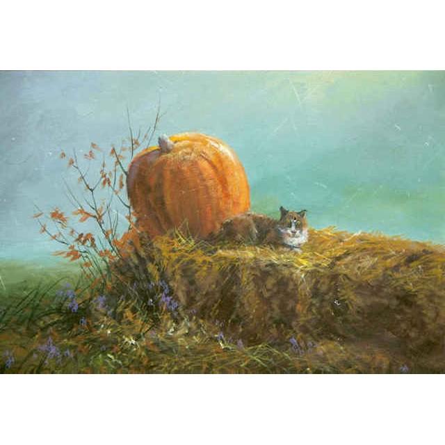 9952 Autumn Cat