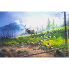 9959 High Country Elk
